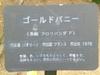 Cimg2509
